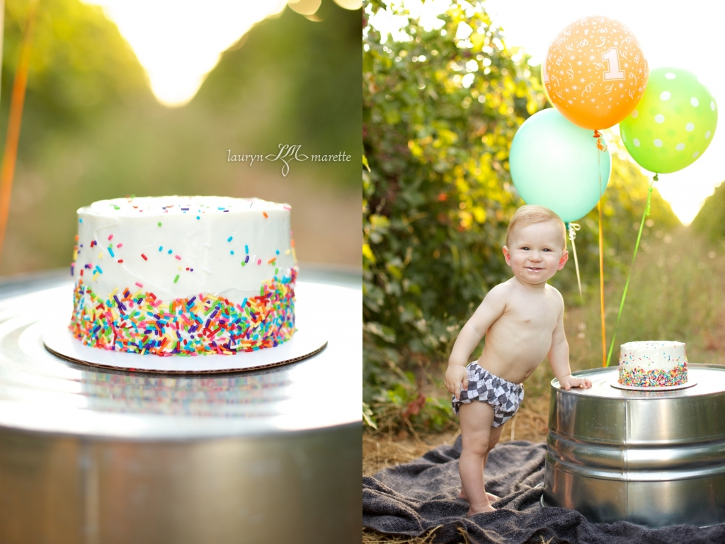 GusWhisnandCakeSmashBlog 0006 1024x768 Gus is One! | Bakersfield Cake Smash Session