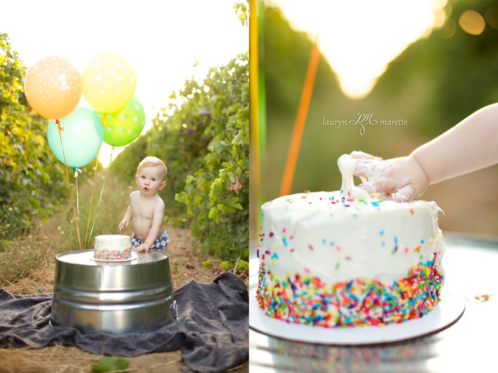 GusWhisnandCakeSmashBlog 0007 1024x767 Gus is One! | Bakersfield Cake Smash Session