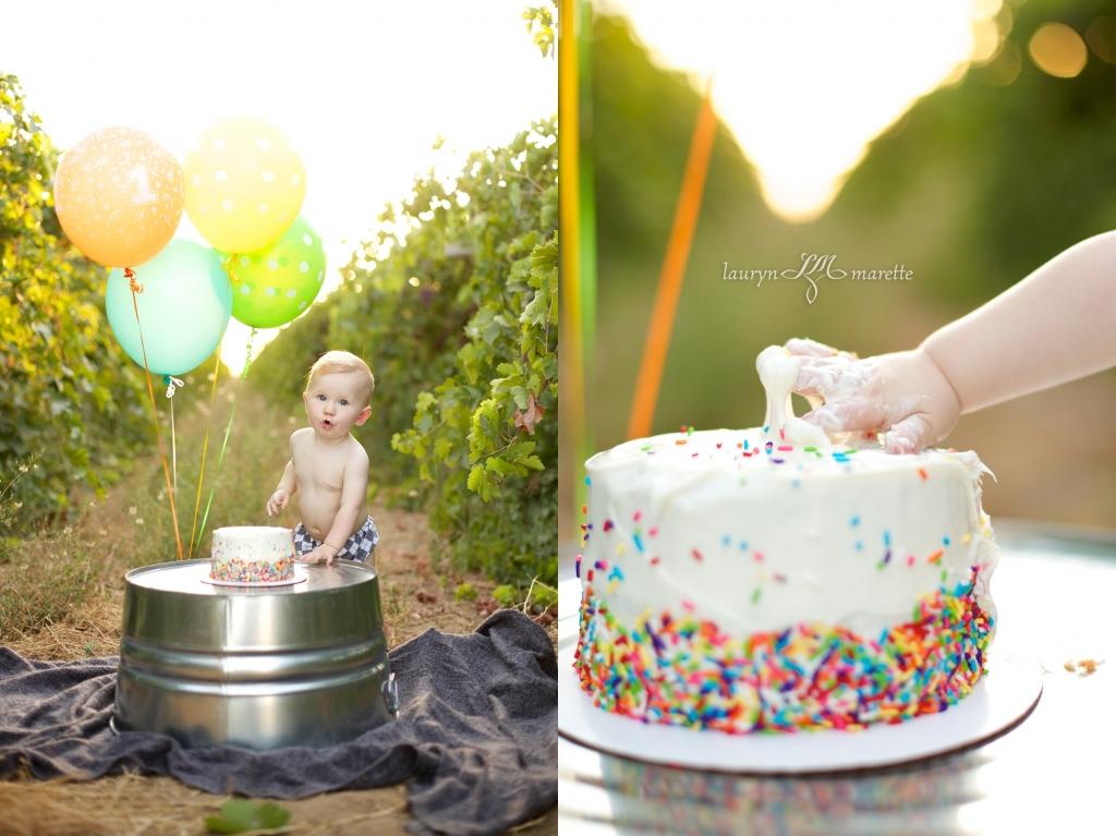 GusWhisnandCakeSmashBlog 0007 1024x767 Gus is One! | Bakersfield Cake Smash Session