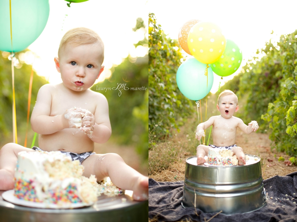 GusWhisnandCakeSmashBlog 0009 1024x768 Gus is One! | Bakersfield Cake Smash Session